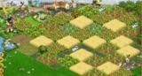 Готовый к засадке участок
