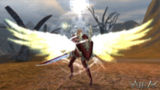 Крылатый паладин