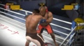 Бой в ринге