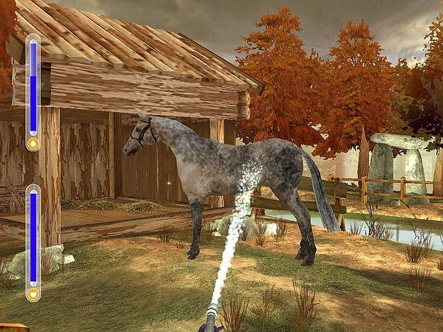 Игры город лошадей