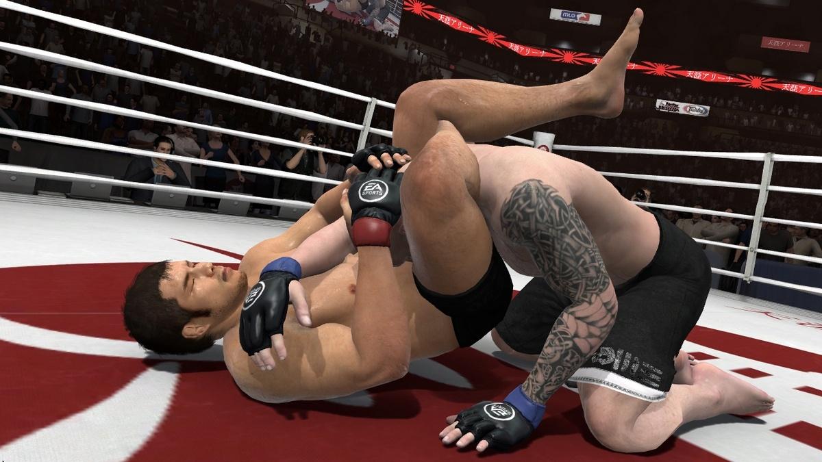 EA Sports MMA Партер