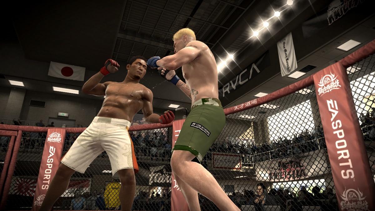 EA Sports MMA Драка