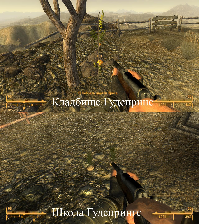 Fallout New Vegas Ингредиенты для задания