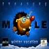 Treasure Mole: Winter Vacation