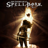 The Chronicles of Spellborn