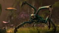 В игре The Elder Scrolls 6 геймеры попадут в Чернотопье